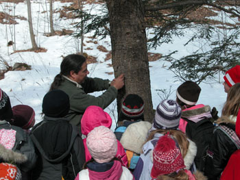 Educational program on maple syrup