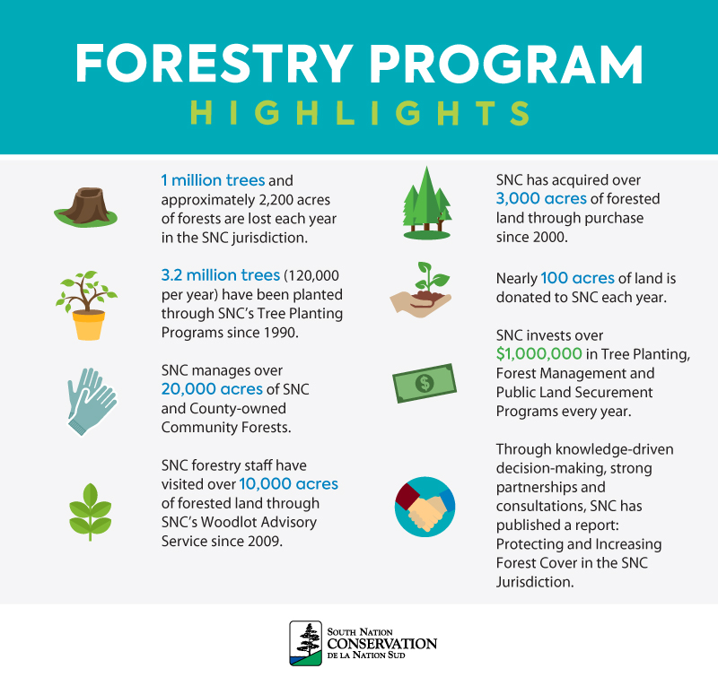 Forestry Program Highlights include stats on trees planted and lost, private woodlots visited, number of public land managed, details on land donations and community partnerships.