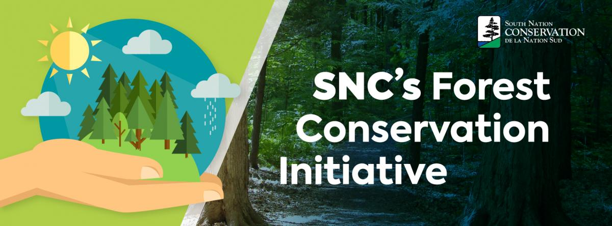 South Nation Conservation's Forest Conservation Initiative